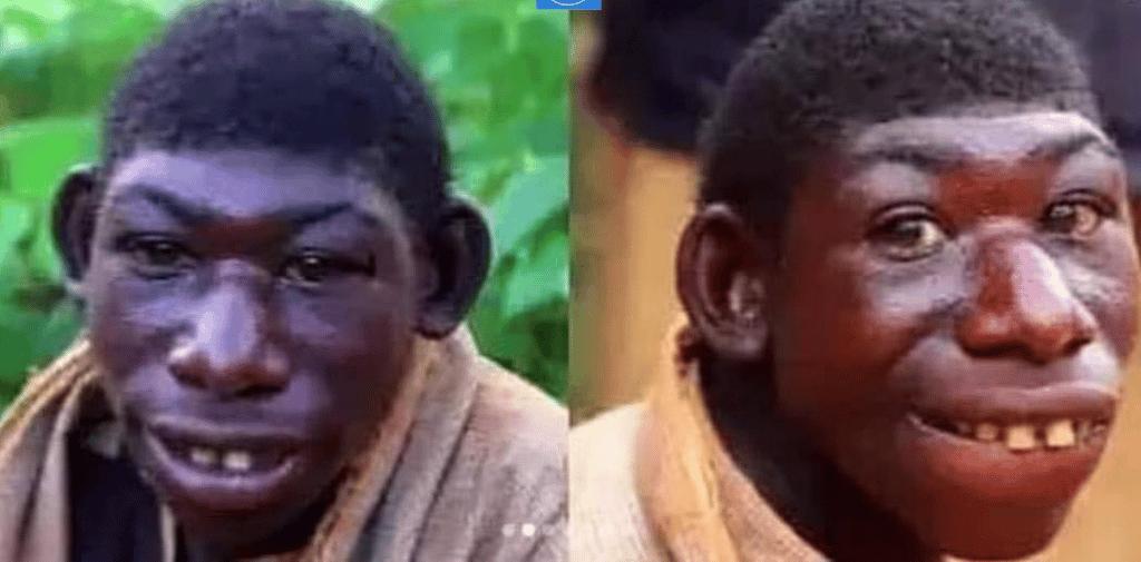 Un singe qui a l'apparence d'un être humain
